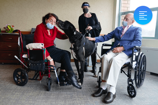 Pandemic isolation - Dogs are making life easy for nursing home residents