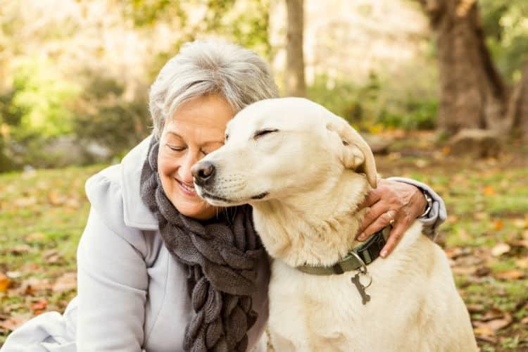 Top 10 best dog breeds for seniors in 2021 - Dogsvets.com