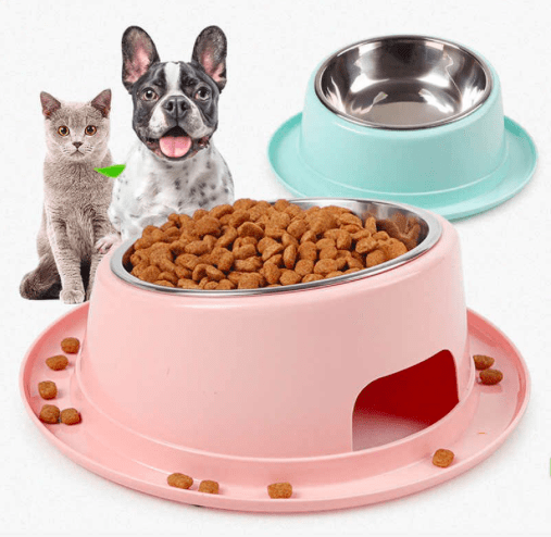 can cat eat dog food - difference between dog food and cat food?