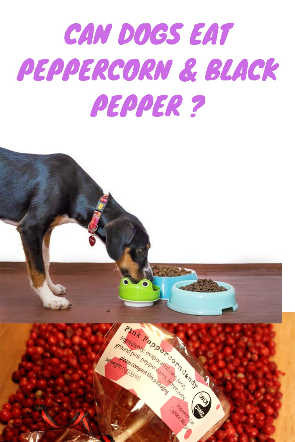can black pepper be harmful to my dog