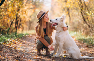 5 Easy Ways To Keep Your Dog Happy And Calm This Summer
