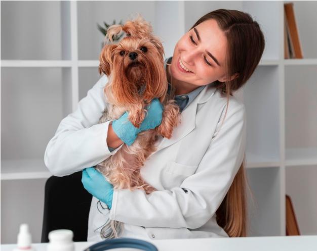 Do I Need Disability Insurance As A Laboratory Veterinarian?