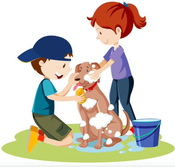 dog bath and bad odor