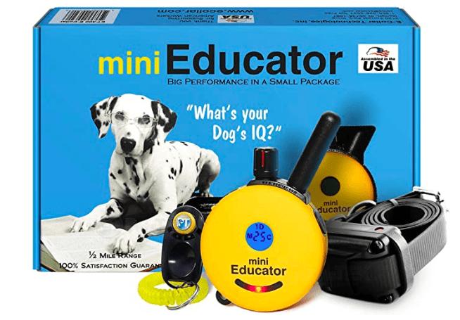 best dogs shock e-collar
