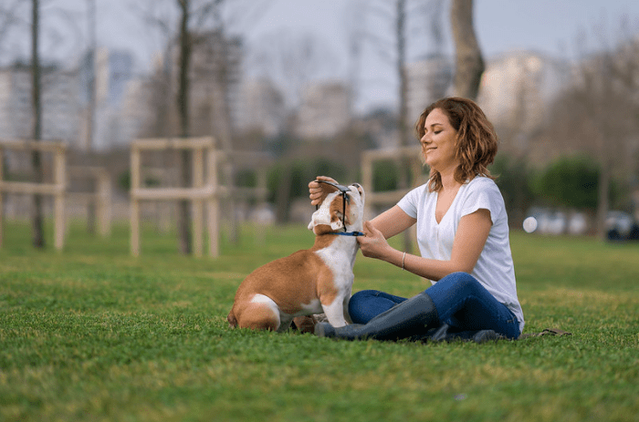 My Relation and Experience With Pets