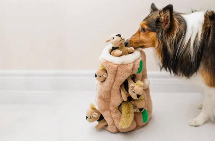 Best gift to dog lovers: 82 Best Gifts For Dog Lovers on Amazon