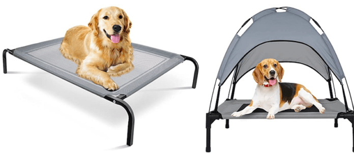 Why do dogs dig on couches? Top 7 best strongest dog beds for Chewers