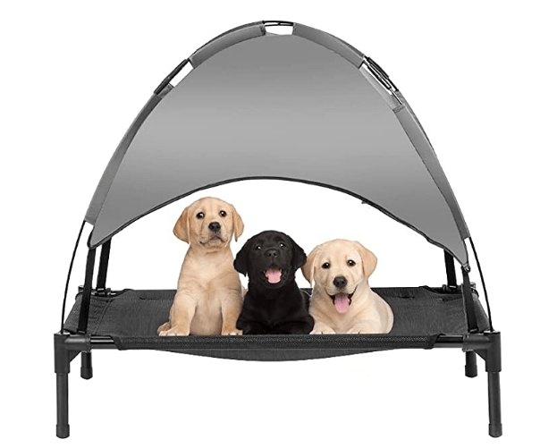 best strongest dog beds for Chewers
