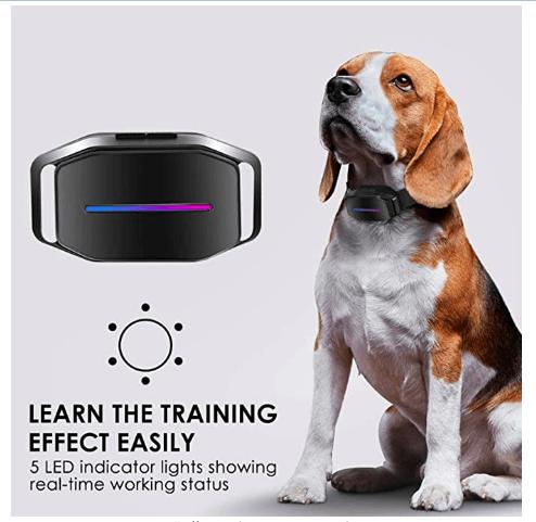 Rechargeable dog Bark Collar