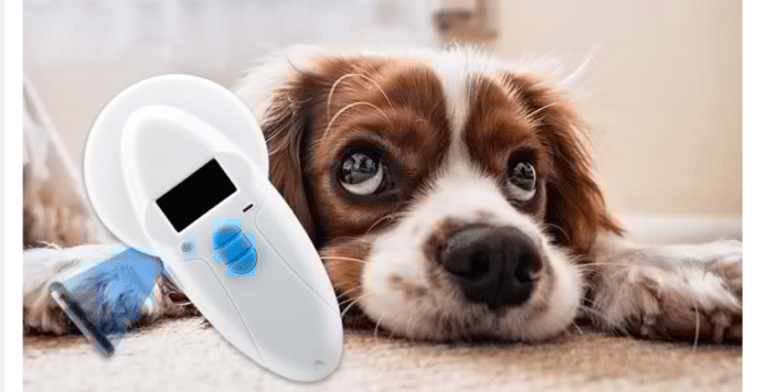 Can a dog or pet be microchipped twice
