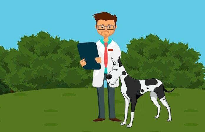 How to Set Up a Successful Veterinarian Practice with the Right Equipment