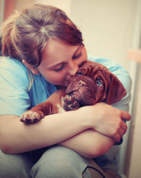 Skin Conditions in Dogs
